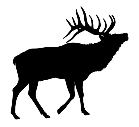 mating: Elk Deer Silhouette Illustration
