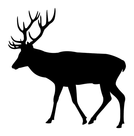 hoofed mammal: Elk deer silhouette on a white background Illustration