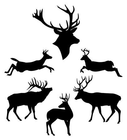 venado: Ciervos siluetas negras establecidos Vectores