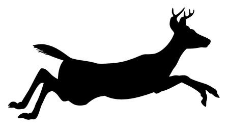 dignified: Deer, black silhouette, white background