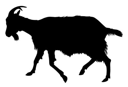Goat silhouette Archivio Fotografico - 46535160