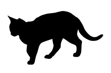 cat silhouette: Cat silhouette isolated on white background Illustration
