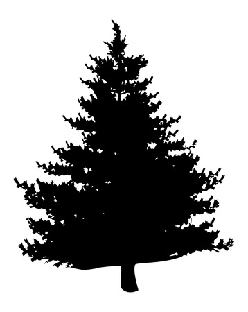 nature one painted: Pine tree silhouette isolated on white background Illustration