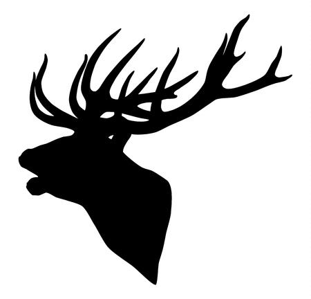 deer silhouette: Black silhouette of a deer head and antlers