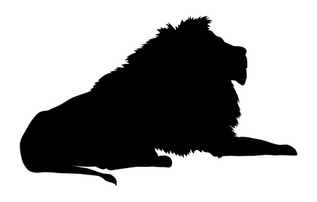 on the lookout: Lion silhouette