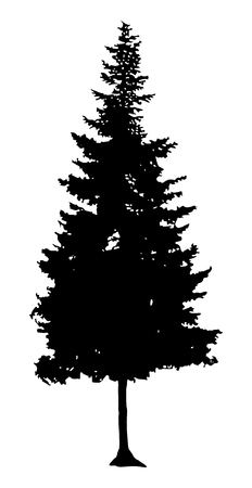 Pine Tree Silhouette Stock Vector - 52106618
