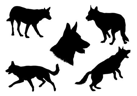 perro policia: Colección de la silueta del pastor alemán