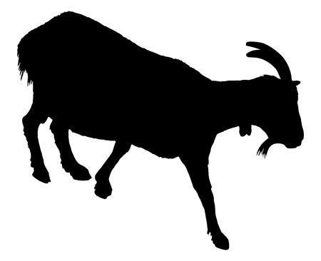 Goat silhouette