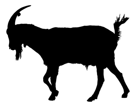 Geit silhouet Stock Illustratie