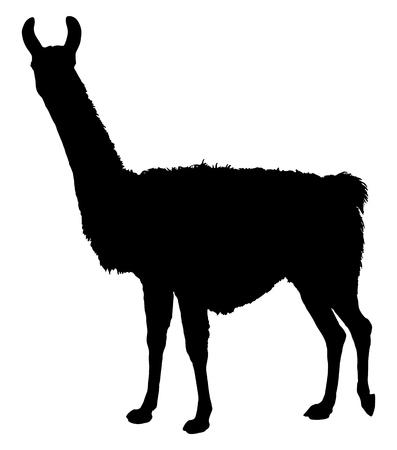 Llama silhouet