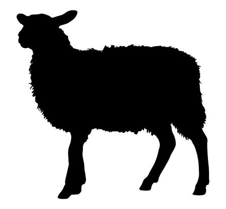 schapen Silhouette Stock Illustratie