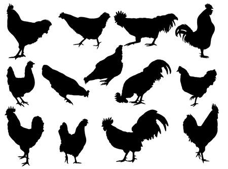 Hen en Haan silhouetten Stock Illustratie
