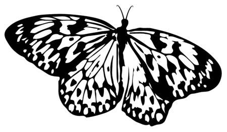 Butterfly silhouet Stock Illustratie