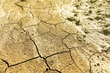 Completely dry land soil with big cracks during hot summer and arid season in the central Europe 免版税图像