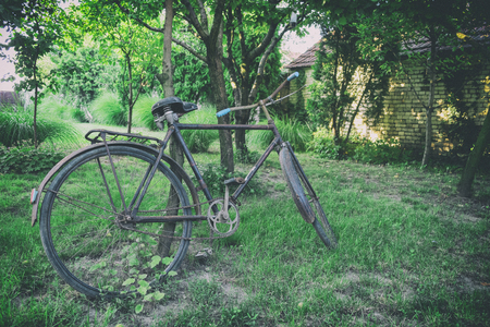 Big old bicycle leaned against the tree . Vintage background, Old photo 免版税图像