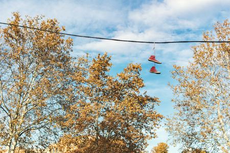 old worn sneakers hanging on the cable on a sunny beautiful autumn day
