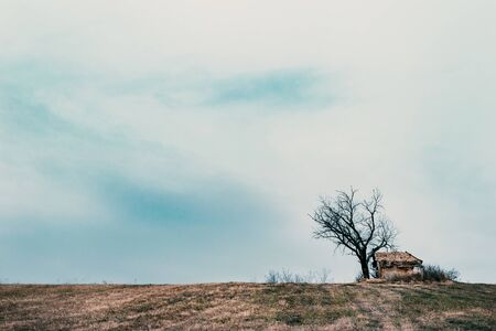Small abandoned cottage on a hill. Leafless tree with and cloudy autumn afternoon scene.