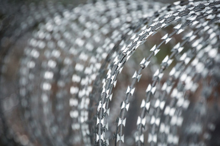 Pattern and surface shape of coiled barbed wire for a background. Archivio Fotografico - 100134745
