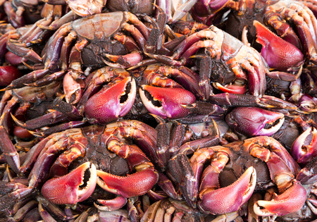 The colors and patterns of salted crabs for cooking.