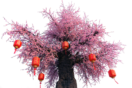 Artificial  Sakura tree on white background.