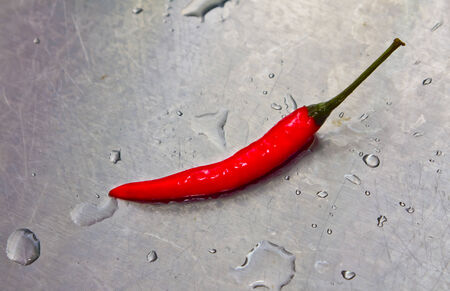 wet red chilli peper