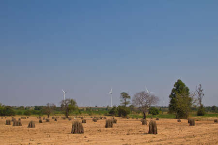 protected plant: wind turbine farm