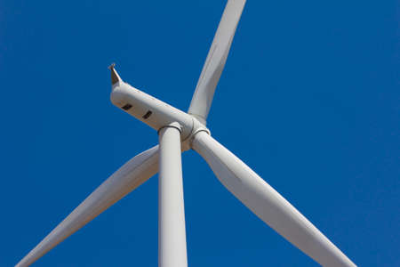 protected plant: close up wind turbine with blue sky