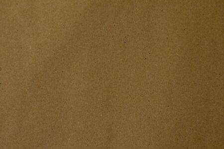 brown paper photo texture. Background for your design.