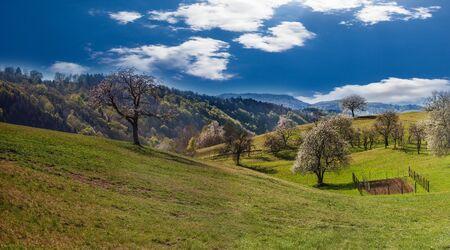 Panorama of the Landscape in Banjšice Near Nova Gorica in Slovenia