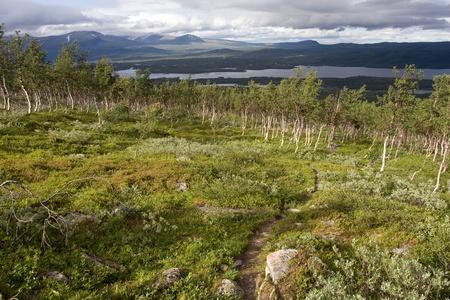 Tundra Landscape near the Kungsleden trail in northernSweden  Lapland  photo