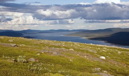 laponie: Paysage de toundra pr�s de la piste dans le nord de la Su�de Kungsleden Laponie