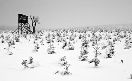 A Hide in Frozen Misty Forest in Winter Landscape, Krusne Mountains, Czech Republic
