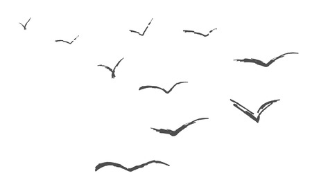small flock: Flyind birds isolated silouette, vector art background