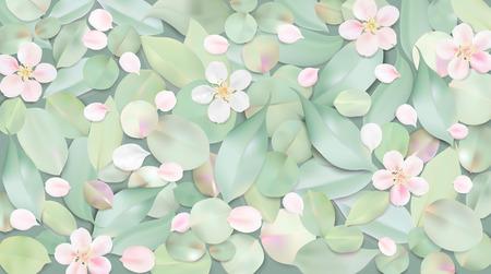 Weißer Pastellhintergrund . Weiche grüne Blätter und rosa Blumen in Wasser Vorlage Vorlage