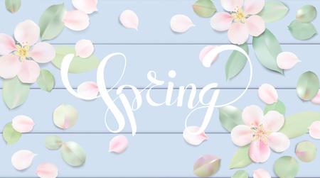 Witte en blauwe pastelkleurachtergrond met de hoogste mening van de de lentebloem. Apple-bloesembloembloemblaadjes op de lijstillustratie