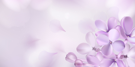 Soft pastel color floral background. Purple Lilac flowers and petals watercolor style vector illustration template Vettoriali