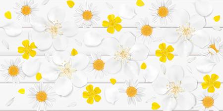 Weiche Pastellfarbe floral 3D-Darstellung auf weißen Hintergrund. Gelbe wilde Kamillen-, Kirschblüte- und Butterblumeen blüht mit Blumenblatt-Aquarellartvektor-Illustrationsschablone. Eco Bio-Muster Standard-Bild - 80713603