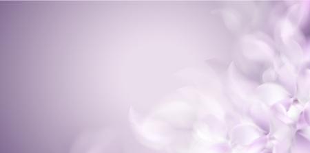 Zachte lente witte achtergrond met paarse wazig bloemblaadjes vectorillustratie Vector Illustratie