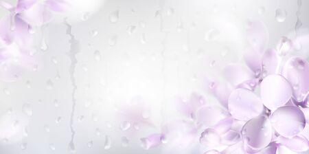Floral background with soft pink lilac flower and rain drops on the window vector illustration template