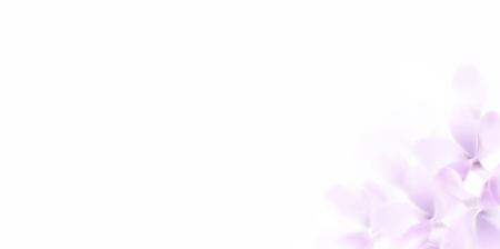 Floral white background with soft pink lilac flowers and petals Standard-Bild - 122558970