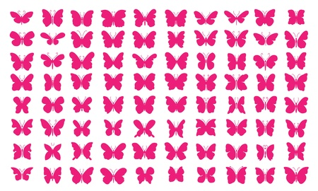 Lots of butterflies - vector illustration  80 Pink Butterflies   Vector