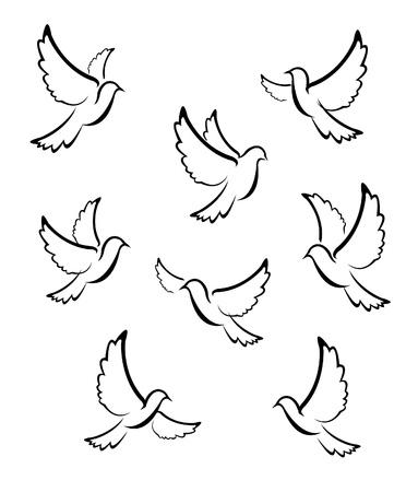 paloma caricatura: paloma vectorial Vectores