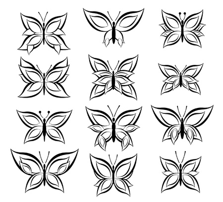 set of Butterfly Illustration Vector