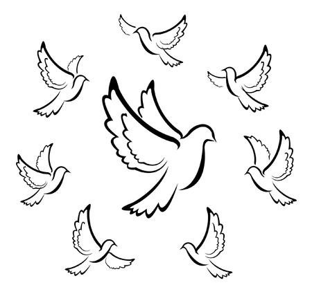 paloma blanca: paloma, símbolo de Ilustración