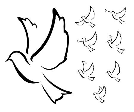 paloma blanca: paloma Ilustración