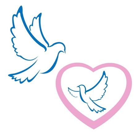 pigeons: colombe symbole de l'amour Illustration