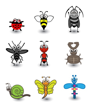Insect Set  Illustration