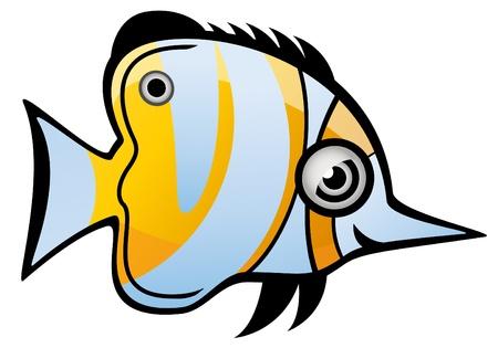 bass fish: Tropical Fish