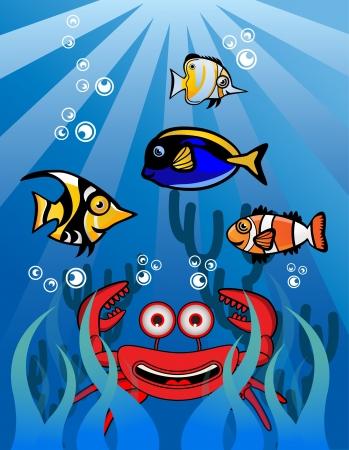 Crab Underwater Stock Vector - 13690051