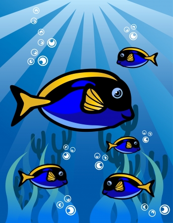 Blue Yellow fish Vector